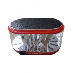 Daniu DS-606 - Colorful LED Flash Lighting Speaker Wireless Bluetooth Speakers with MIC TF Card USB and FM